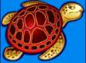 Wh_schildpad