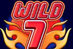 wild_7
