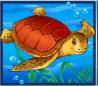 Bd_schildpad