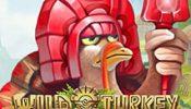wild_turkey