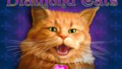 diamond_cats