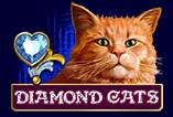 Diamond Cats