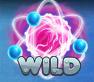 A_wild