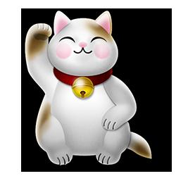 Gw kat