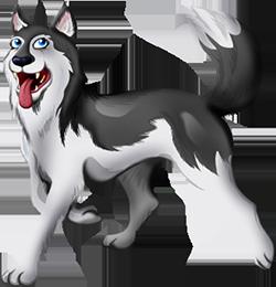 Iw hond